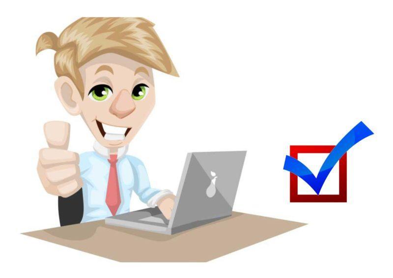 На картинке изображен программист с ноутбуком. Он работает на выборах