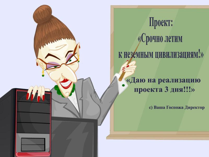 Госпожа IT Директор